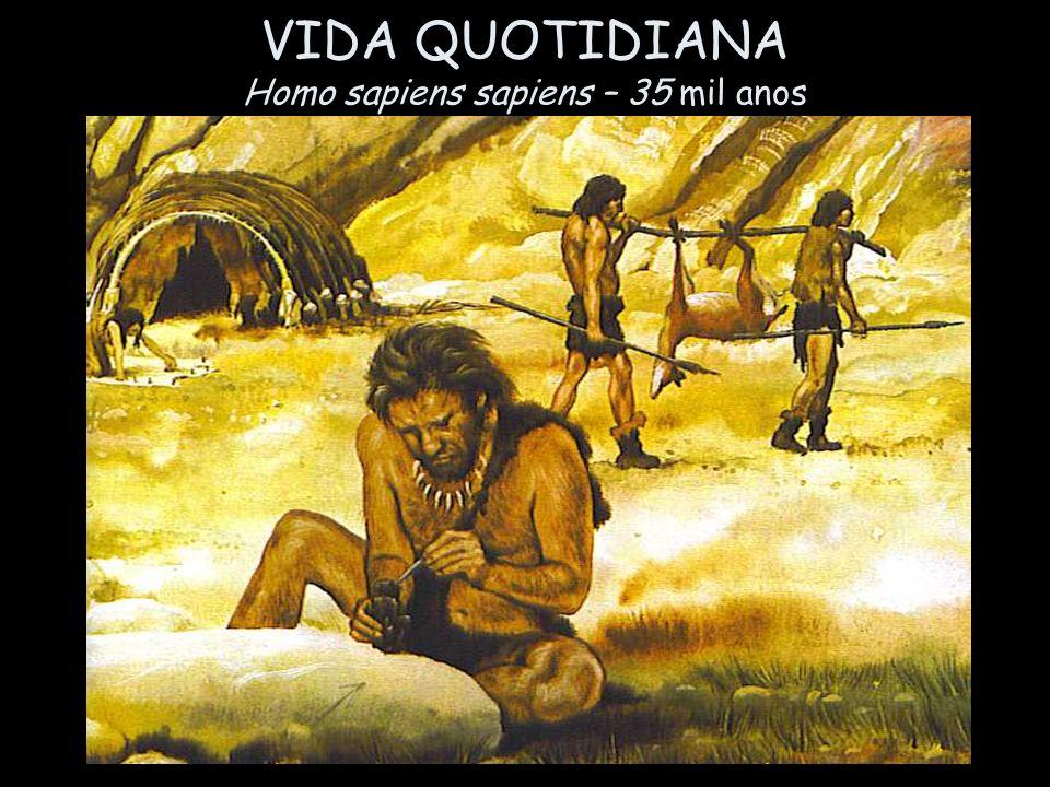 VIDA QUOTIDIANA Homo sapiens sapiens – 35 mil anos