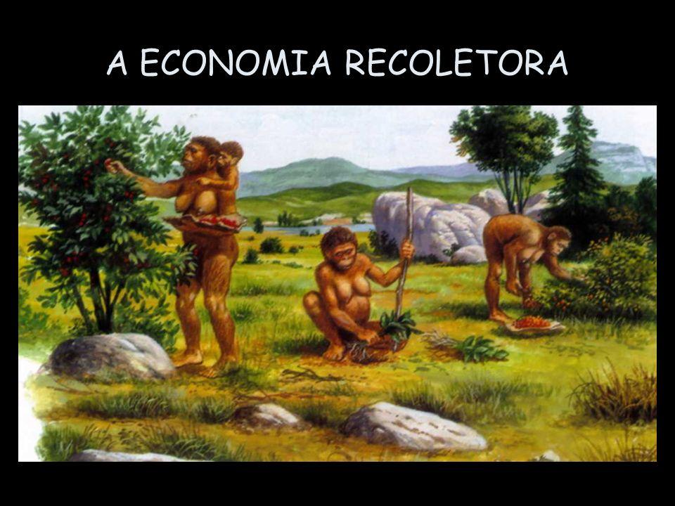 A ECONOMIA RECOLETORA