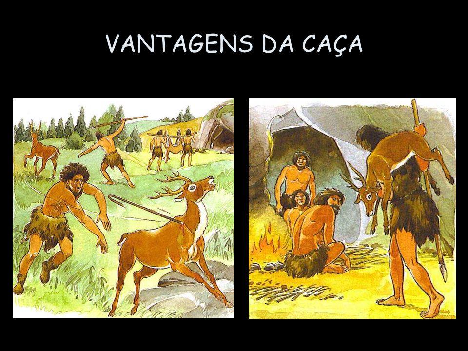 VANTAGENS DA CAÇA