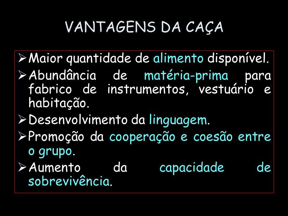 VANTAGENS DA CAÇA Maior quantidade de alimento disponível.