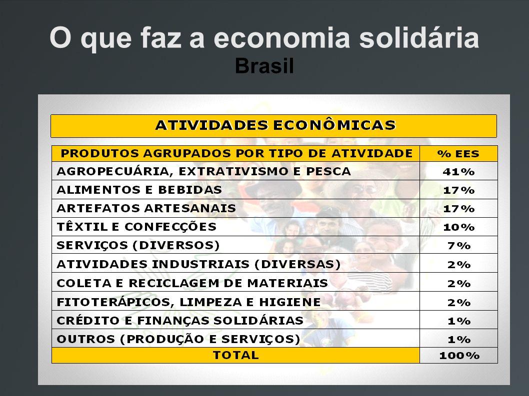 O que faz a economia solidária Brasil