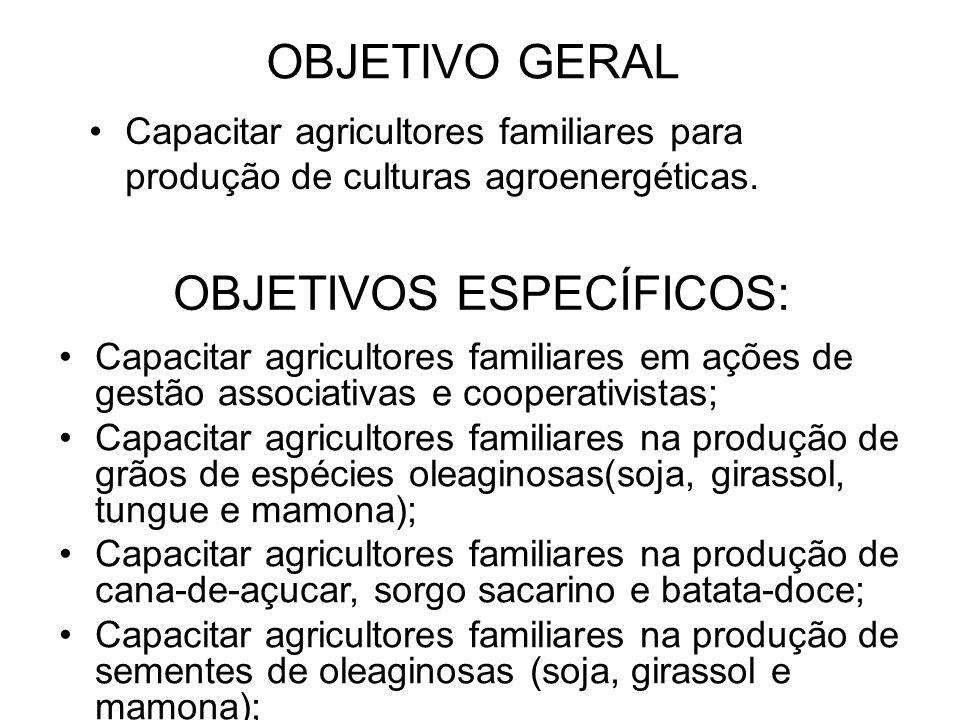 OBJETIVOS ESPECÍFICOS: