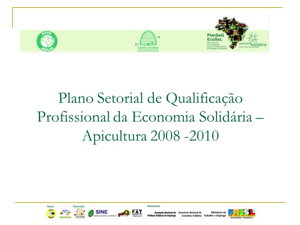 Plano Setorial de Qualificação Profissional da Economia Solidária – Apicultura 2008 -2010
