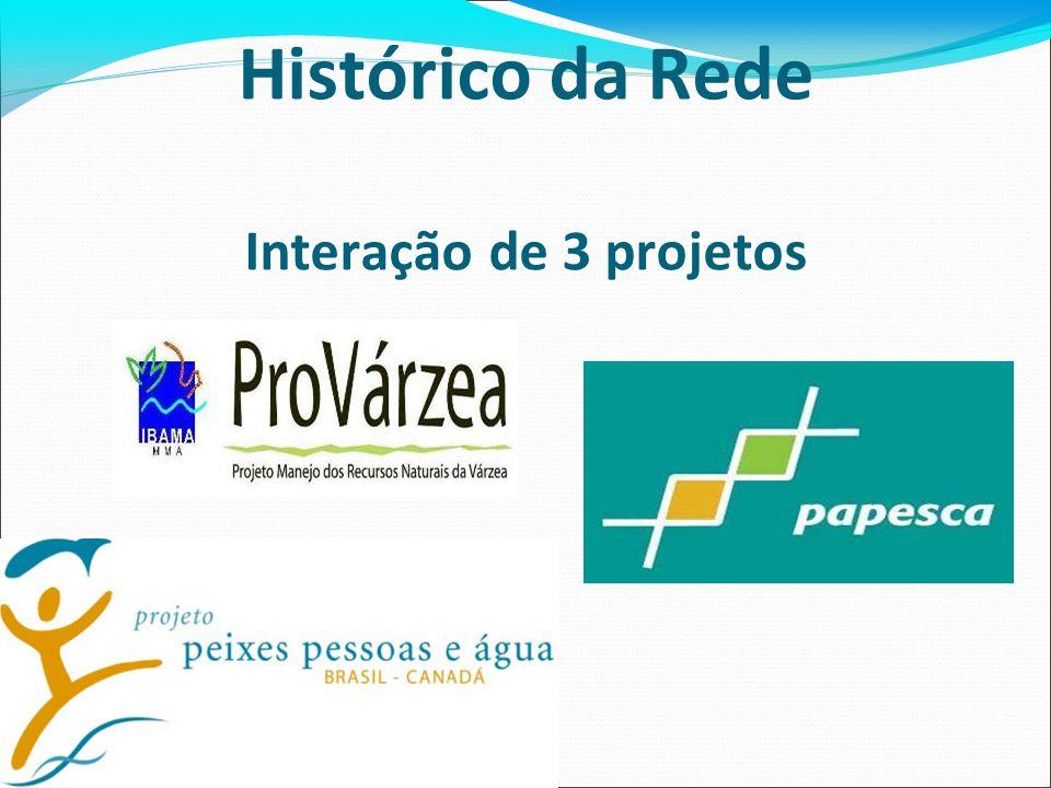 Histórico da Rede Interação de 3 projetos