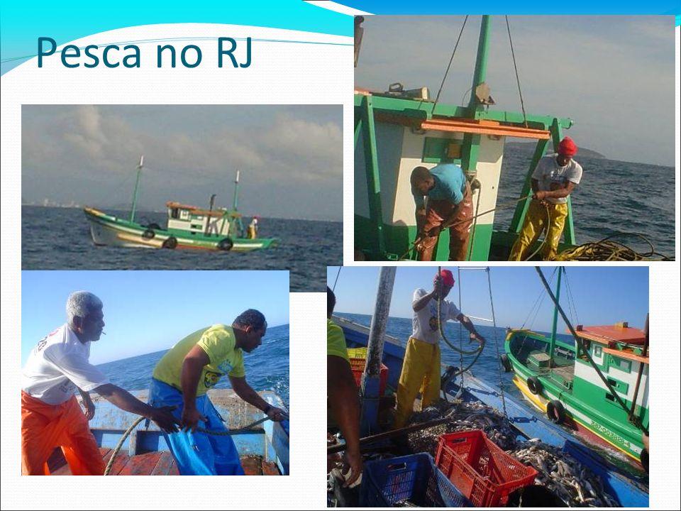 Pesca no RJ