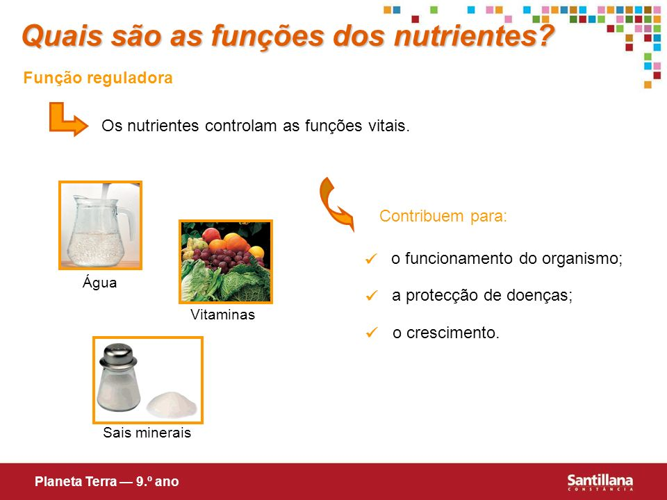 Quais são as funções dos nutrientes