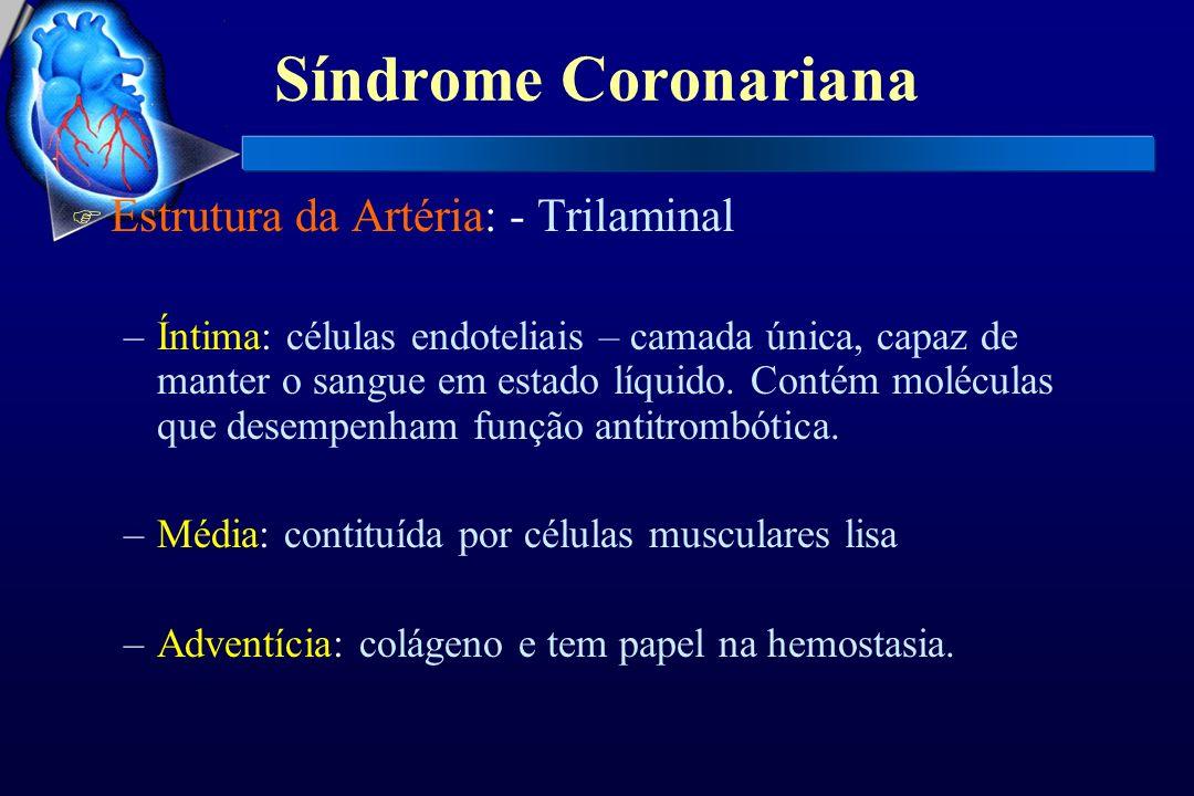 Síndrome Coronariana Estrutura da Artéria: - Trilaminal