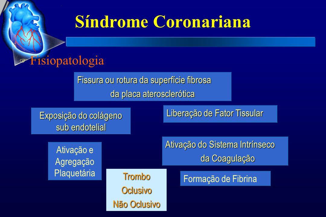 Síndrome Coronariana Fisiopatologia