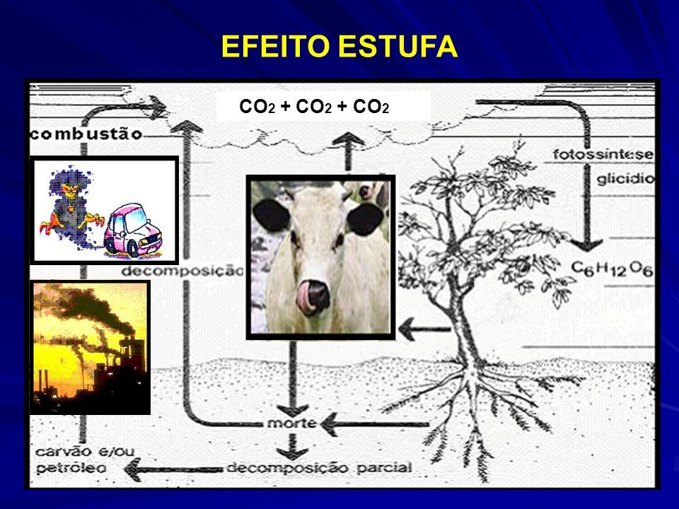 EFEITO ESTUFA CO2 + CO2 + CO2