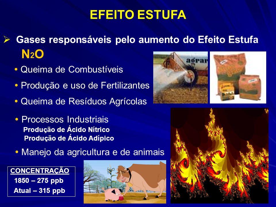 EFEITO ESTUFA N2O Gases responsáveis pelo aumento do Efeito Estufa