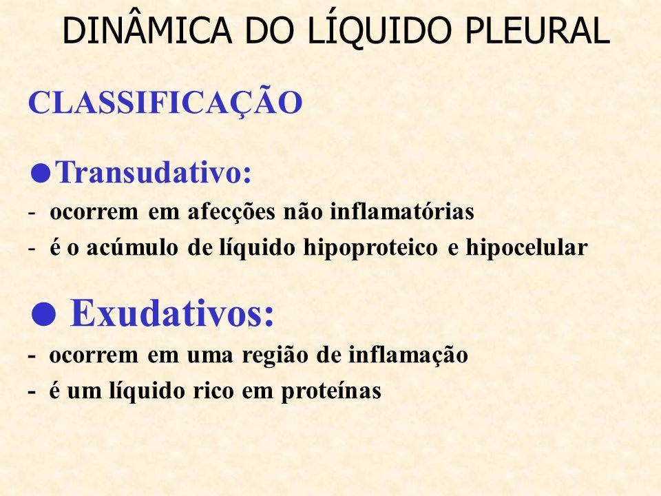 ● Exudativos: DINÂMICA DO LÍQUIDO PLEURAL CLASSIFICAÇÃO ●Transudativo: