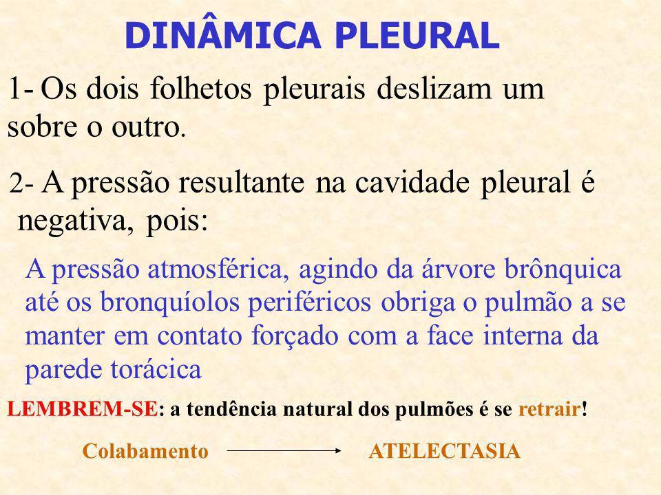 DINÂMICA PLEURAL 1- Os dois folhetos pleurais deslizam um