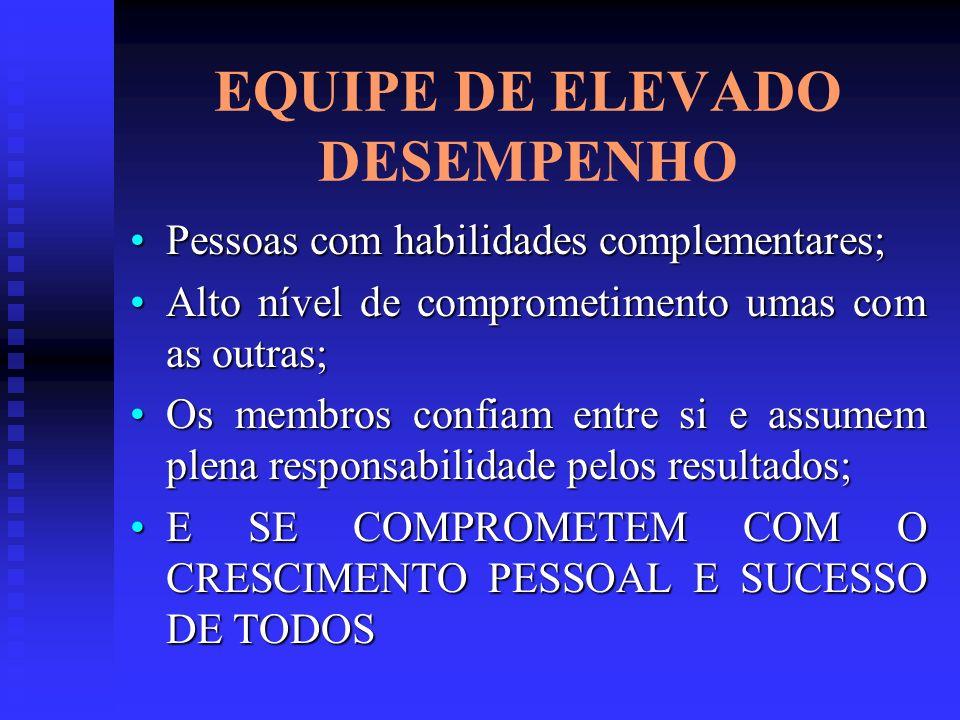EQUIPE DE ELEVADO DESEMPENHO