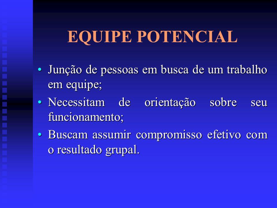 EQUIPE POTENCIAL Junção de pessoas em busca de um trabalho em equipe;