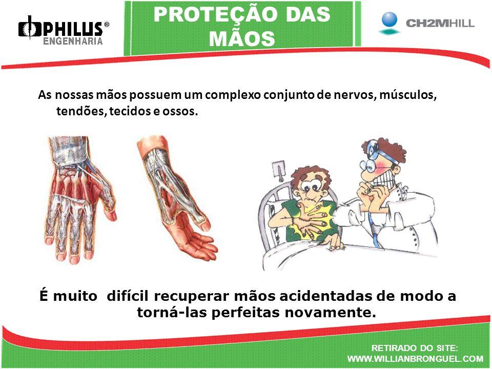 PROTEÇÃO DAS MÃOS As nossas mãos possuem um complexo conjunto de nervos, músculos, tendões, tecidos e ossos.