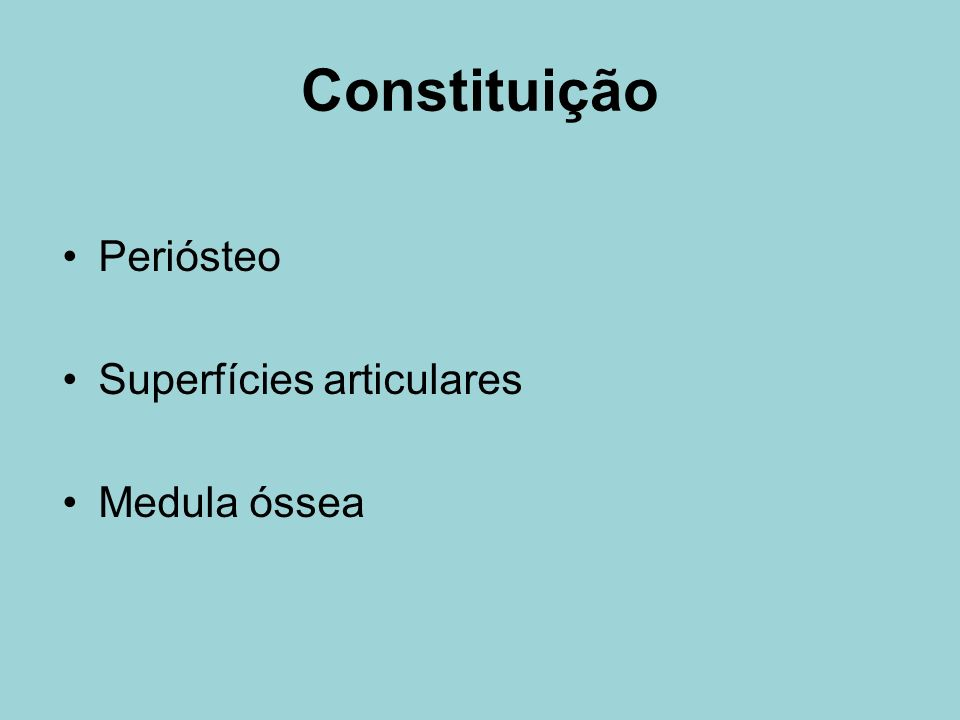 Constituição Periósteo Superfícies articulares Medula óssea