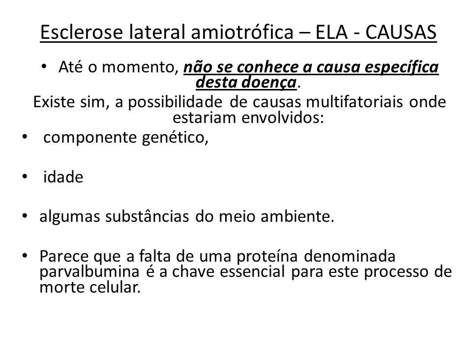 Esclerose lateral amiotrófica – ELA - CAUSAS