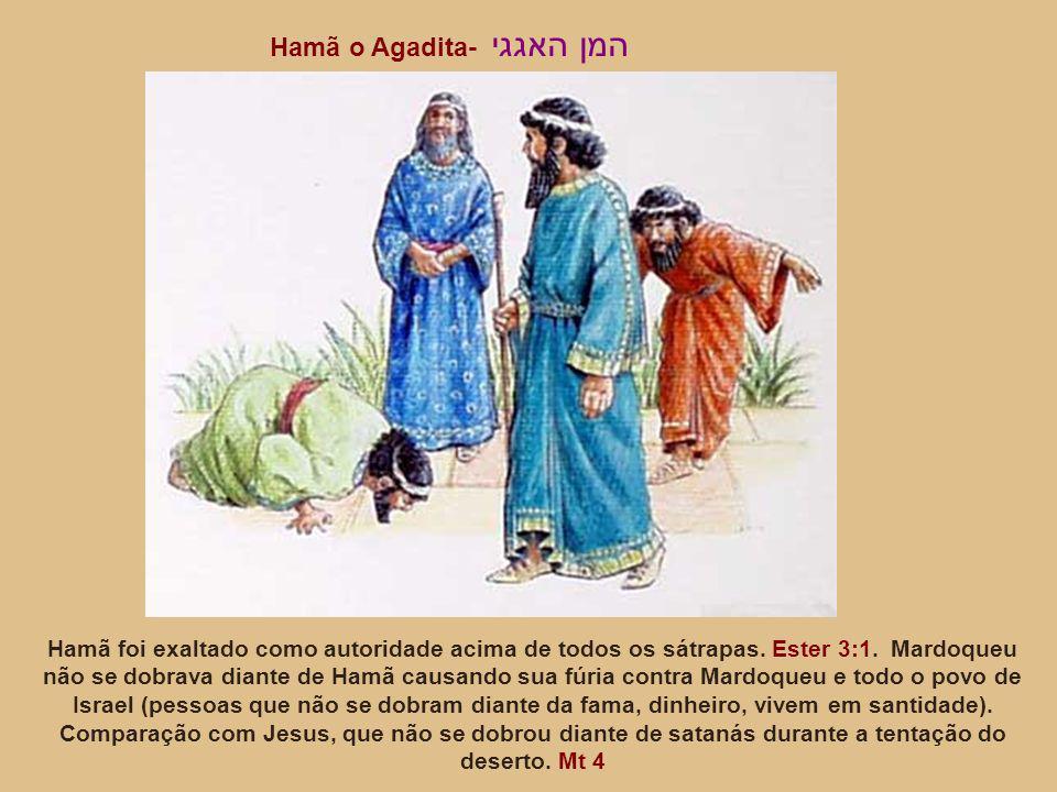 Hamã o Agadita- המן האגגי