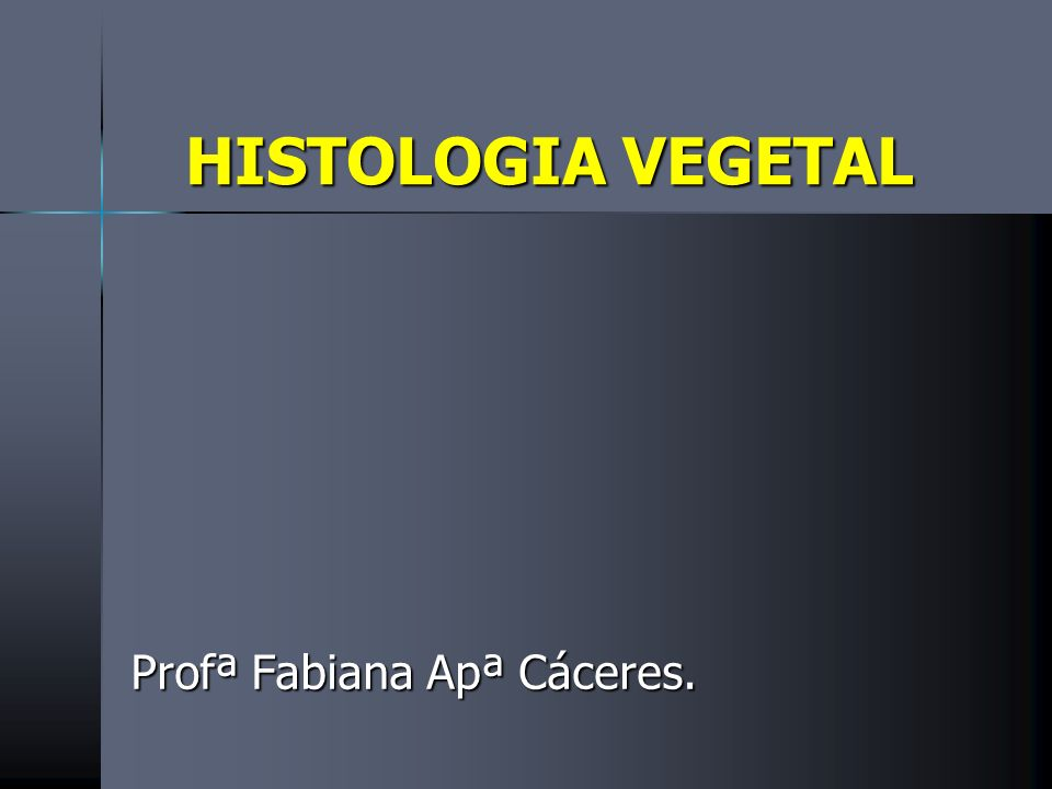 Profª Fabiana Apª Cáceres.