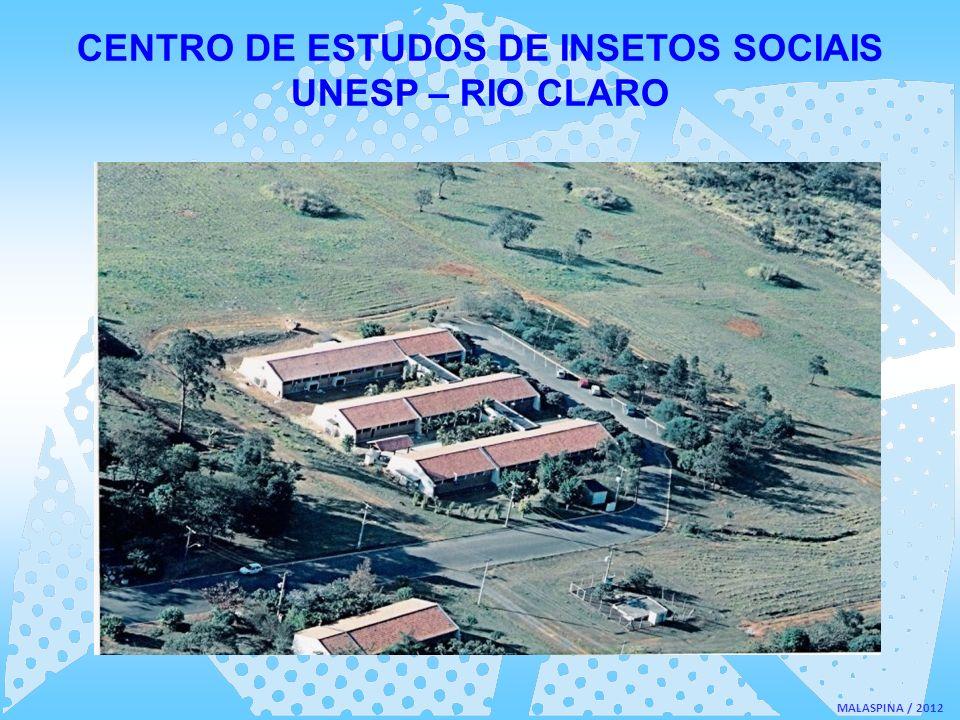 CENTRO DE ESTUDOS DE INSETOS SOCIAIS