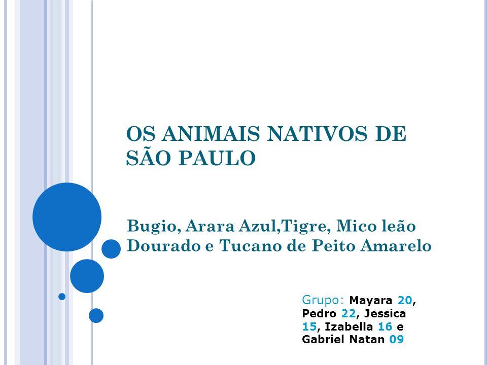 OS ANIMAIS NATIVOS DE SÃO PAULO