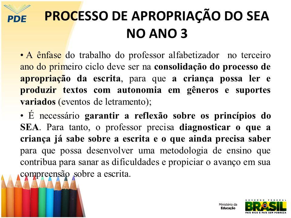 PROCESSO DE APROPRIAÇÃO DO SEA NO ANO 3