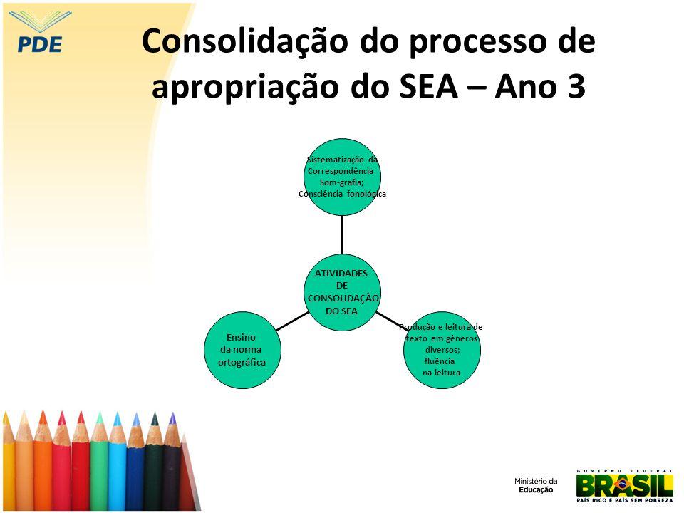 Consolidação do processo de apropriação do SEA – Ano 3