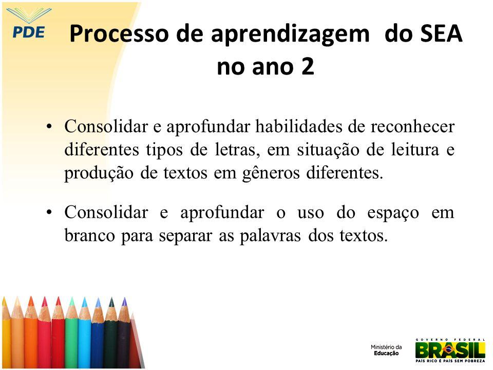 Processo de aprendizagem do SEA no ano 2