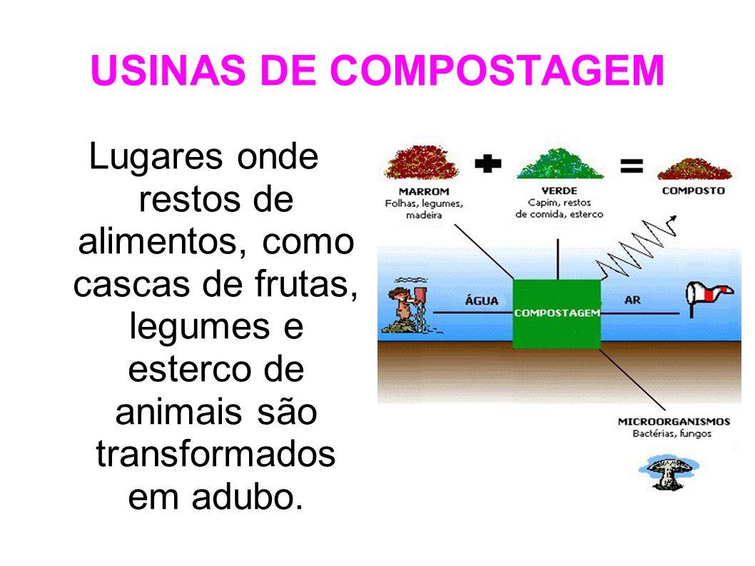 USINAS DE COMPOSTAGEM Lugares onde restos de alimentos, como cascas de frutas, legumes e esterco de animais são transformados em adubo.