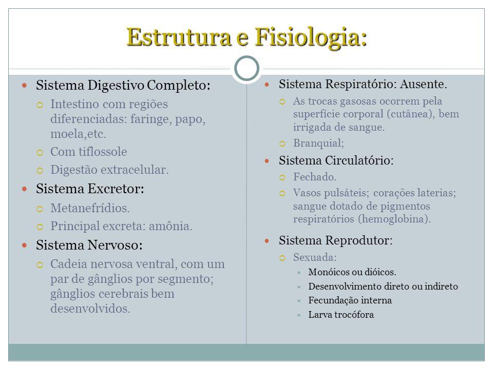 Estrutura e Fisiologia: