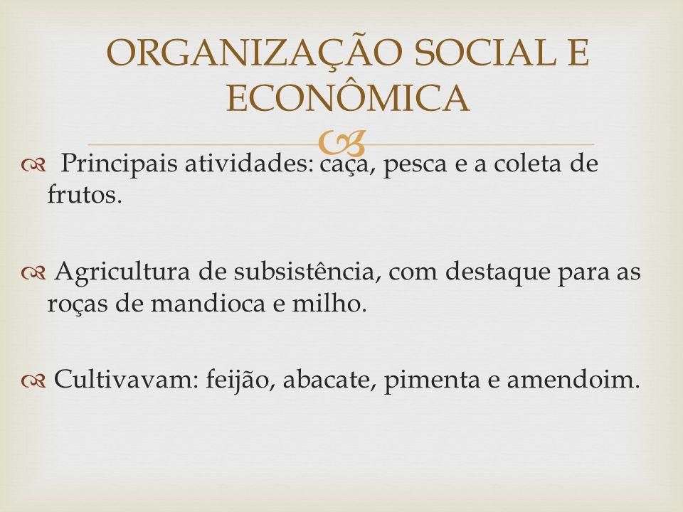ORGANIZAÇÃO SOCIAL E ECONÔMICA