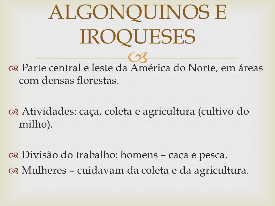 ALGONQUINOS E IROQUESES