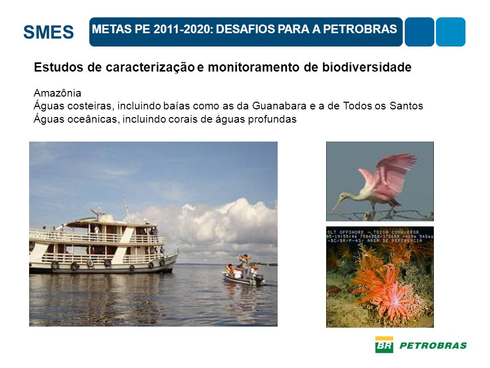 Estudos de caracterização e monitoramento de biodiversidade