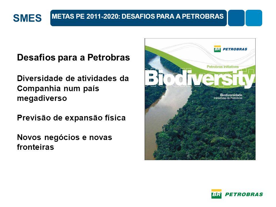 Desafios para a Petrobras