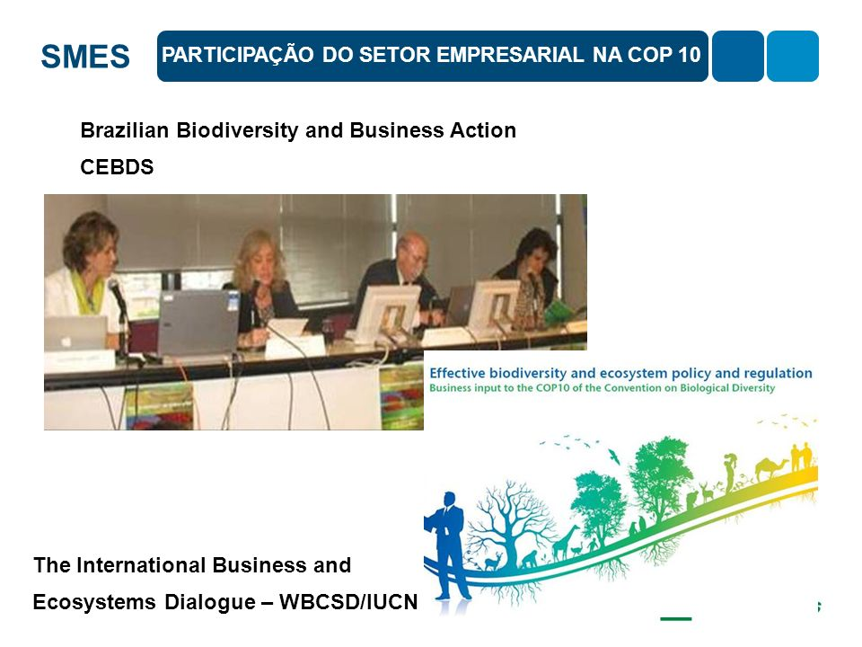 PARTICIPAÇÃO DO SETOR EMPRESARIAL NA COP 10