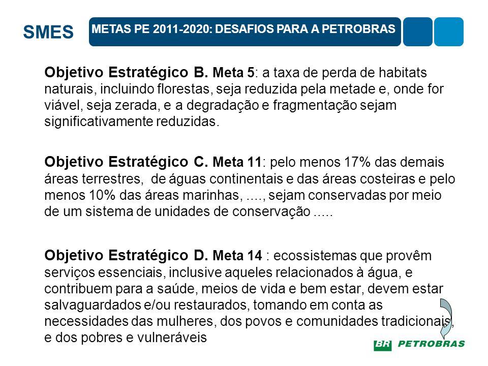 METAS PE 2011-2020: DESAFIOS PARA A PETROBRAS
