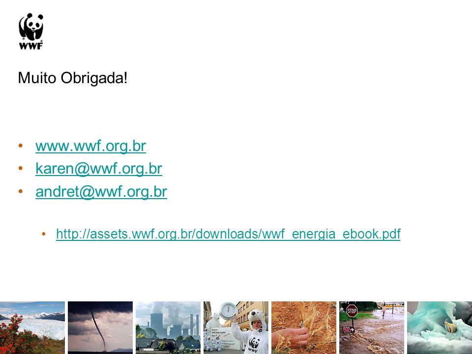 Muito Obrigada! www.wwf.org.br karen@wwf.org.br andret@wwf.org.br