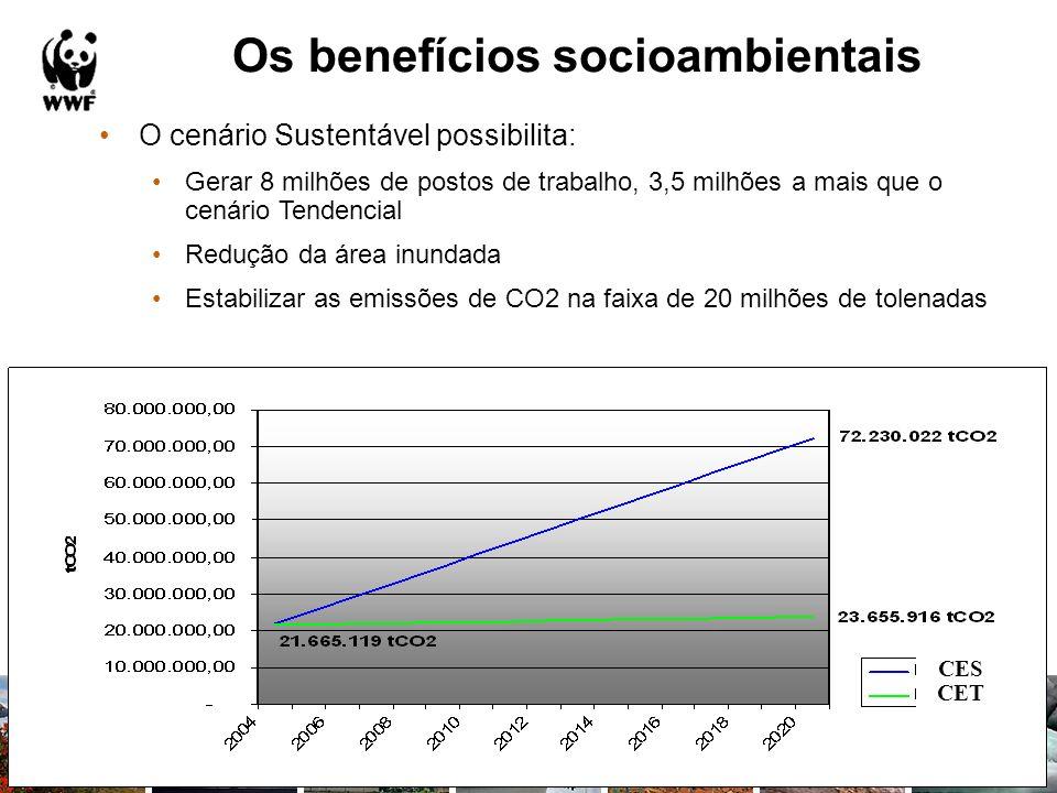 Os benefícios socioambientais