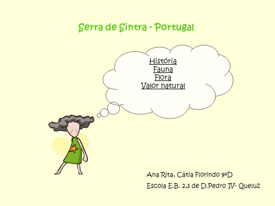Serra de Sintra - Portugal