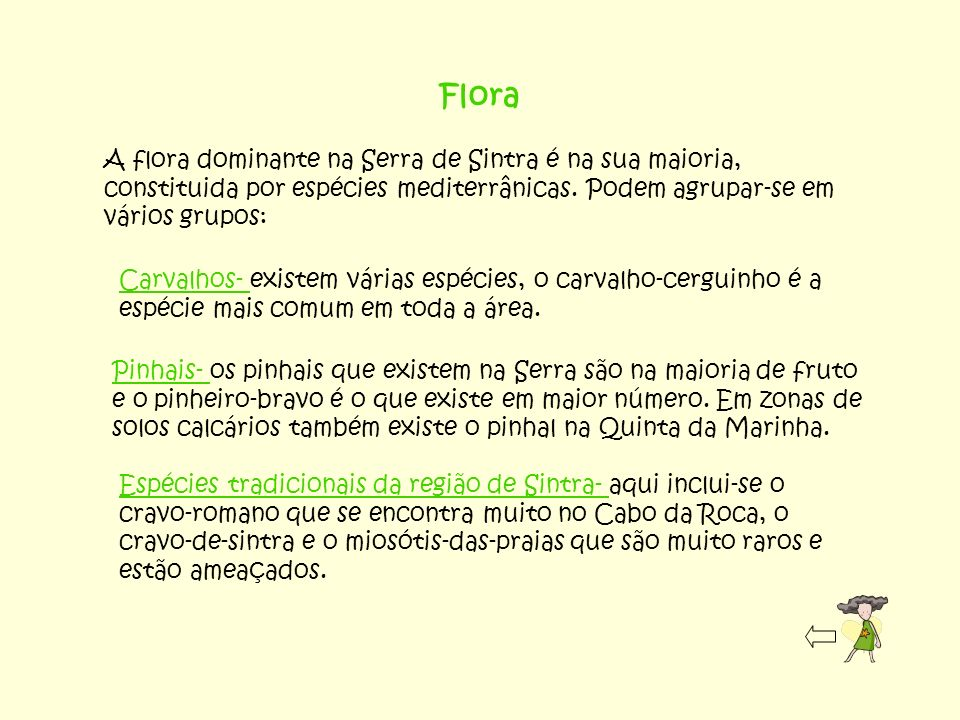 Flora A flora dominante na Serra de Sintra é na sua maioria, constituida por espécies mediterrânicas. Podem agrupar-se em vários grupos: