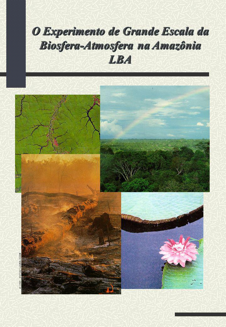 O Experimento de Grande Escala da Biosfera-Atmosfera na Amazônia