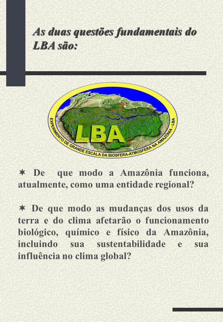 As duas questões fundamentais do LBA são: