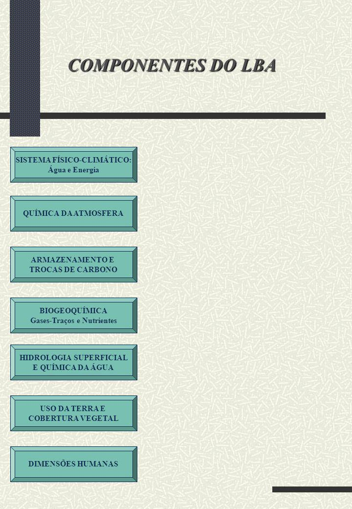 COMPONENTES DO LBA SISTEMA FÍSICO-CLIMÁTICO: Água e Energia