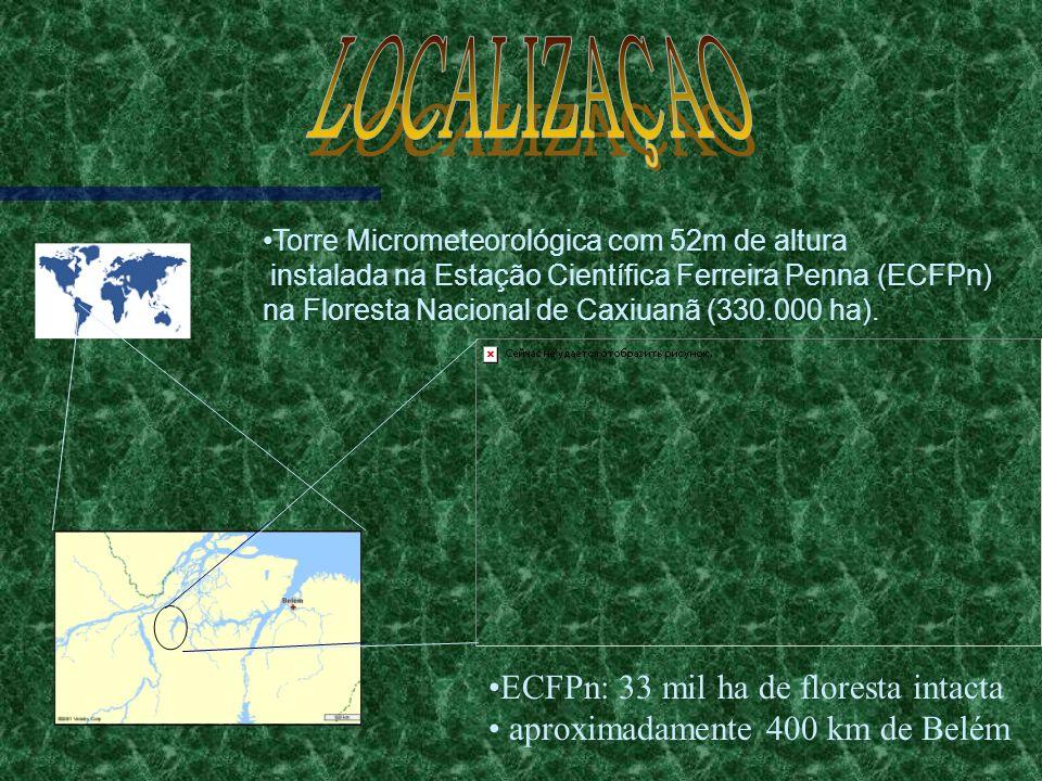 LOCALIZAÇAO ECFPn: 33 mil ha de floresta intacta