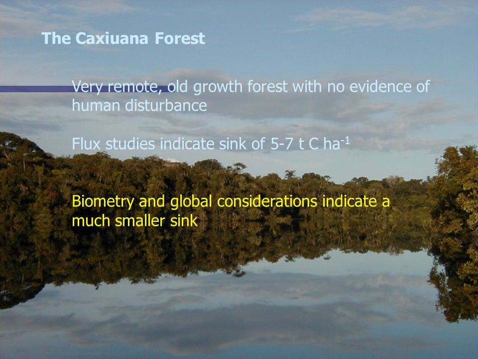 The Caxiuana Forest Very remote, old growth forest with no evidence of. human disturbance. Flux studies indicate sink of 5-7 t C ha-1.