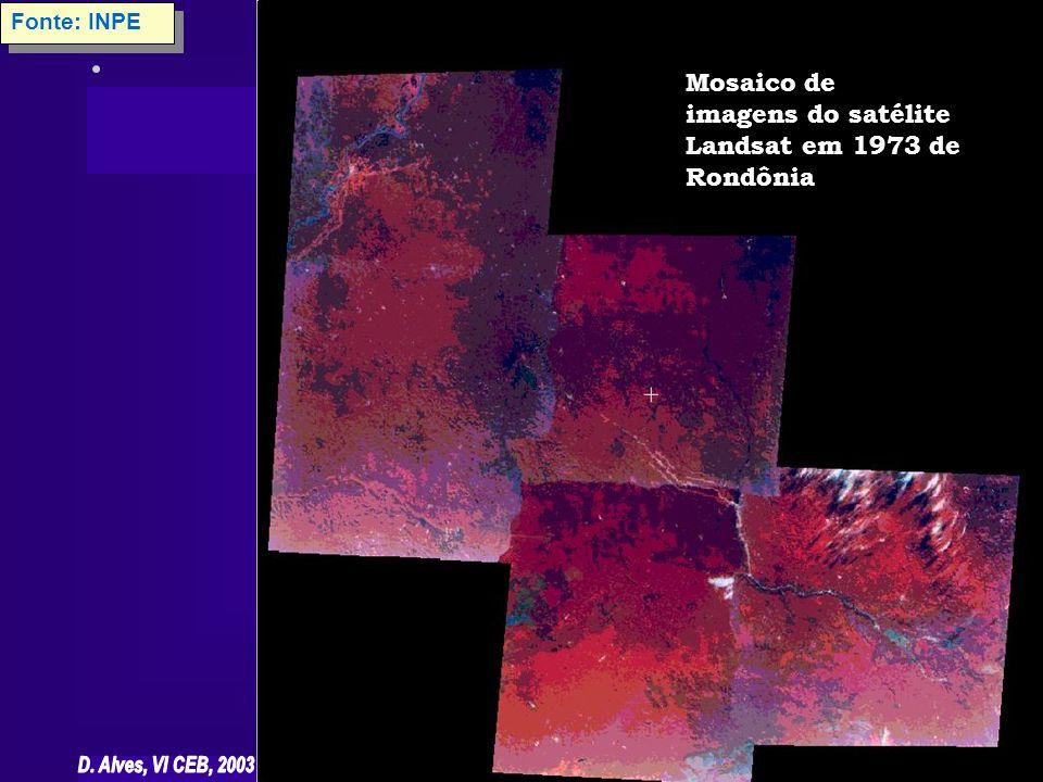 Mosaico de imagens do satélite Landsat em 1973 de Rondônia Fonte: INPE