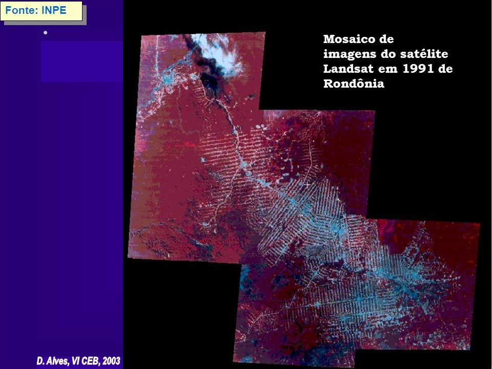 Mosaico de imagens do satélite Landsat em 1991 de Rondônia Fonte: INPE