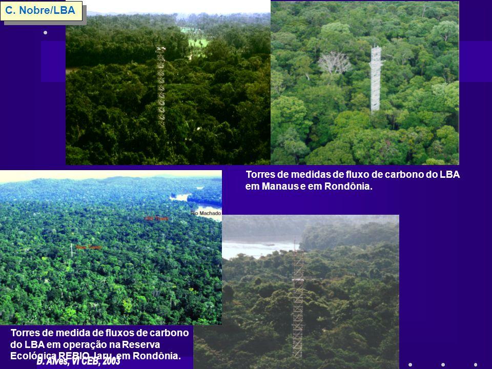 C. Nobre/LBA Torres de medidas de fluxo de carbono do LBA em Manaus e em Rondônia.