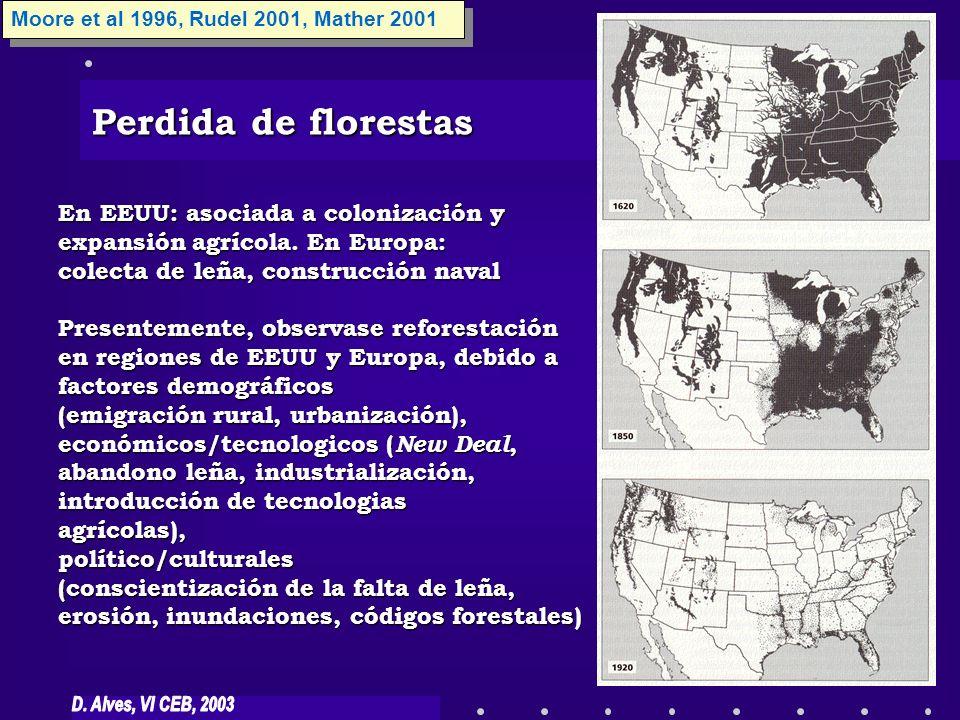 Perdida de florestas En EEUU: asociada a colonización y