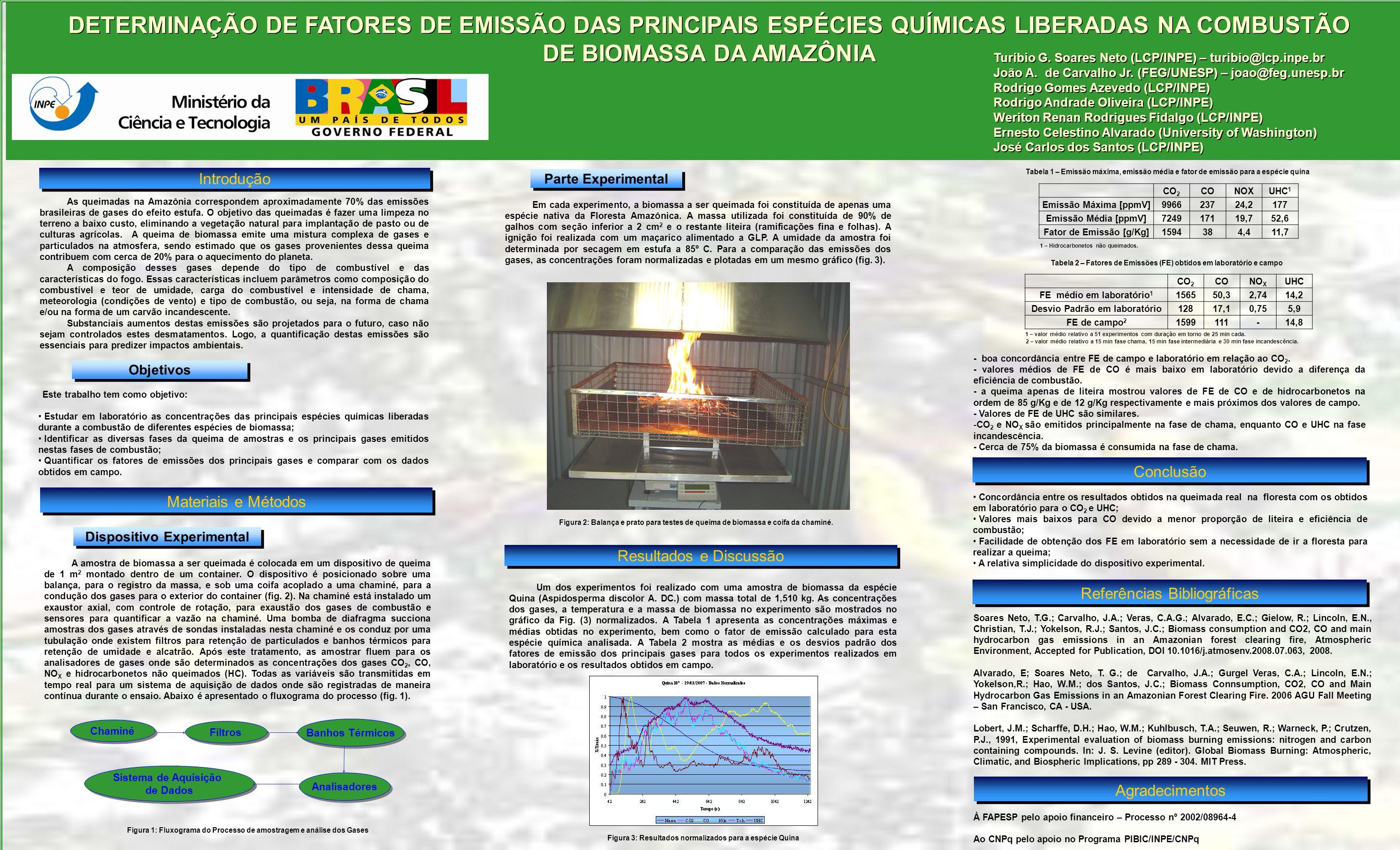 DETERMINAÇÃO DE FATORES DE EMISSÃO DAS PRINCIPAIS ESPÉCIES QUÍMICAS LIBERADAS NA COMBUSTÃO DE BIOMASSA DA AMAZÔNIA